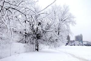 Bacau_Winter_01_1200