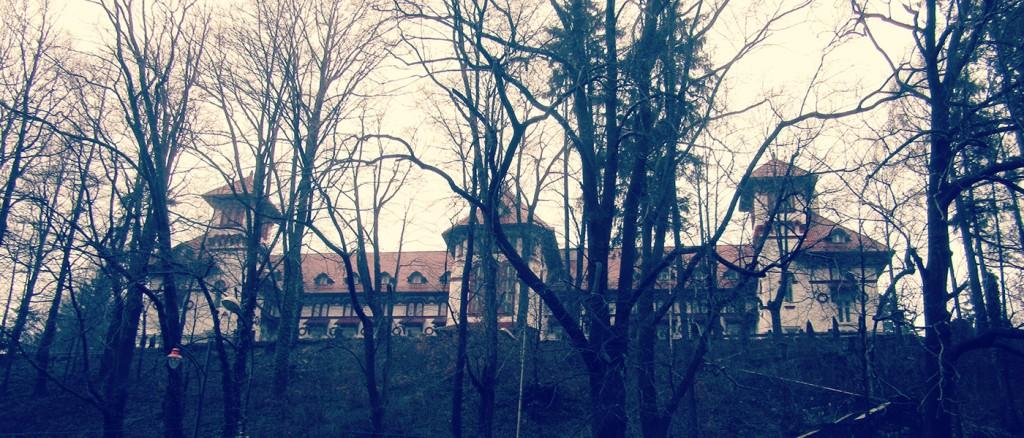 Castelul_Peles_09