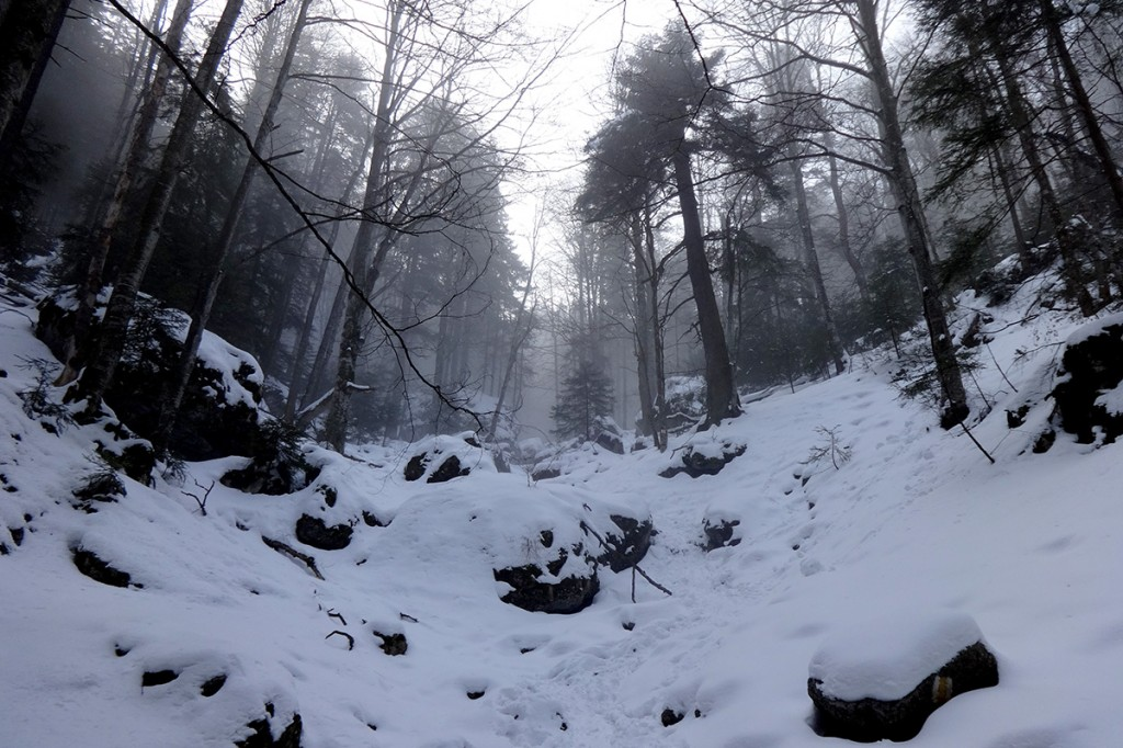 Hike_02_03