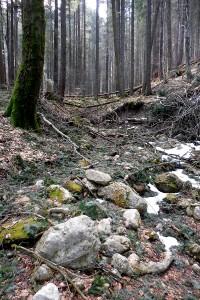 Hike_15